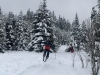 Skiing and snowboarding holidays in February Half Term 2018 in Zakopane, Poland with White Side Holidays Poland