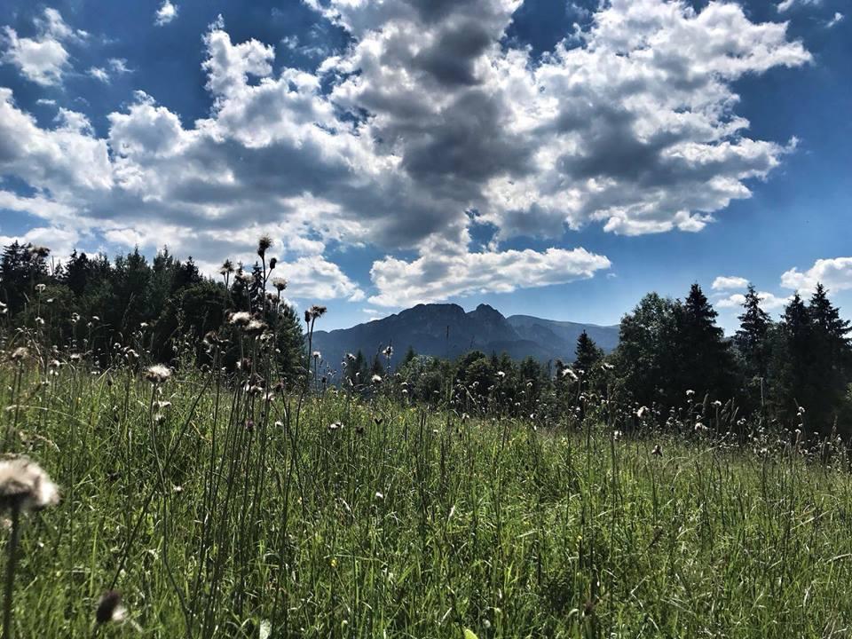 Summer 2018 in Zakopane, last week's surprise snowfall has melted away!