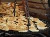 Oscypek grilling at the market in Zakopane