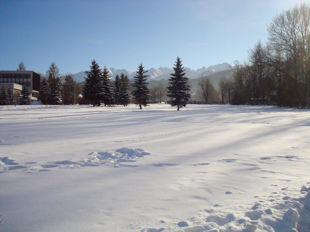 White Side Holidays, View from the Park in Zakopane, Poland
